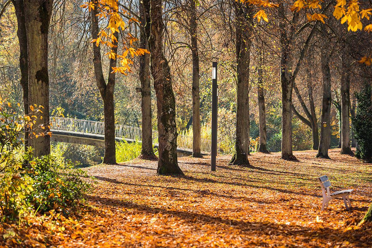 Kurpark Bad Liebenzell Herbst